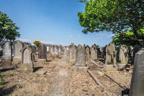 MOUNT JEROME CEMETERY AND CREMATORIUM IN HAROLD'S CROSS [SONY A7RM2 WITH VOIGTLANDER 15mm LENS]-117113