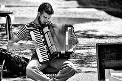 Street Musician (WilliamND4) Tags: beard musician candid man music blackandwhite bw nikon nikond750 street