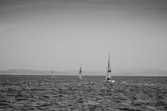 Corse : voiliers N&B (y.becart) Tags: travel sea mer white france french boats vacances boat travels europe noir alone corse horizon corsica fran nb balck monde holliday et blanc bonifacio hollidays