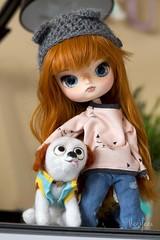 Pui con Bisojo ^^ (Heniferu) Tags: dog toy ooak dal perro ooakdoll customdolls obitsu heniferu shisencolors