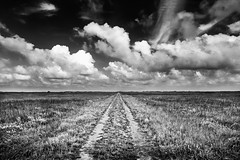 Road To The Novillo Line Camp - Padre Island National Seashore (Mike Schaffner) Tags: ranch park sky blackandwhite bw building monochrome grass clouds island blackwhite nationalpark farm dunes restored nationalparkservice seashore padre bunkhouse novillo padreislandnationalseashore cattlestation patrickdunn linecamp