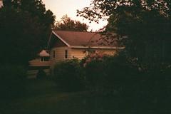 (Flimmy) Tags: pink sunset summer house storm cute green film june yellow analog yard 35mm canon dark 50mm twilight kodak dusk grain lawn 35mmfilm rosemarie analogue grainy shrubbery yellowhouse 800iso canonat1 sooc flimmy