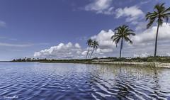 Coqueiros em Ilha no litoral da Costa do Saupe na Bahia Brasil (Gustavo Mello .) Tags: azul brasil canon landscape lago mar grande do angle wide cu bahia nuvens angular turismo litoral ilha coqueiros sauipe saupe