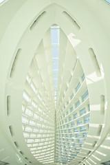I Might Find Heaven (Thomas Hawk) Tags: usa wisconsin architecture america unitedstates unitedstatesofamerica milwaukeeartmuseum milwaukee santiagocalatrava fav10