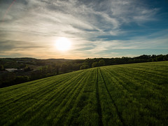 Fieldscape (Raphal Melloul) Tags: blue sunset sun france green nature field photography photo photographer photos picture aerial photograph raphael pp advanced discover picoftheday photographe drone photographies melloul dji bestoftheday mensignac
