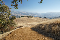 Pleasanton Ridge Regional Park (silkylemur) Tags: sanfrancisco california northerncalifornia canon lens unitedstates hiking sanfranciscobayarea eastbay fullframe canoneos pleasanton hikingtrail zoomlens llens 24105mm canonef canonef24105mmf4l canonef24105mmf4lisusm  pleasantonridgeregionalpark eflens eastbayregionalpark canonef24105mmf4lisusmlens efmount canoneos6d