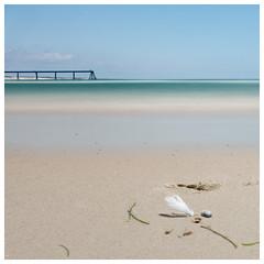 2 times more sweetness (alouest225) Tags: paysage landscape square plage beach sand sable lasalie wharf gironde aquitaine sony rx100m3 ocean atlantique poselongue longexposure france bassindarcachon mer sea summer feather alouest225