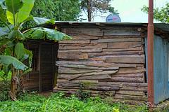 Minimal housing just outside Ri Kynjai Resort compound in Meghalaya (stevebfotos) Tags: meghalaya hdr shack umiamlake topaz shillong localhouse oldnew india in