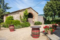 Greve in Chianti - Vicchiomaggio Wine Estate Entrance (Le Monde1) Tags: italy castle florence nikon wine vine tuscany tasting renaissance greve grapevine greveinchianti d610 castellovicchiomaggio lemonde1