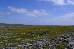 DSC_1012 (kulturaondarea) Tags: viajes irlanda bidaiak