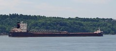 Algoma Transport (Jacques Trempe 2,370K hits - Merci-Thanks) Tags: canada river ship quebec transport stlawrence stlaurent fleuve algoma navire stefoy bulker vraquier