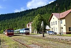 749 259-8 Cervena Skala, Slovakia 21 Jun 16 (doughnut14) Tags: diesel rail loco slovensko slovakia railtour grumpy notforprofit nfp ckd cervenaskala t4782065 zeleznicne 7492598