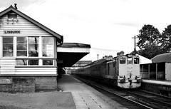 Railways - Irish Railways Bo-Bo diesel on Dublin to Belfast Enterprise service passing Lisburn (Biffo1944) Tags: dublin diesel bobo belfast enterprise lisburn cie northern ireland irish railways