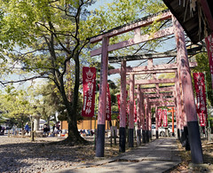 20130428_102  Toyokuni-jinja Shrine, Kyoto, JP |   (peter-rabbit) Tags: mamiya film japan analog mediumformat 50mm kyoto asia inari m f45 professional 400   fujifilm 6x7 67 145 rz67 fujicolor   mamiyarz67 silverfast fujicolorpro400  pro400 f50mm fujipro400 uld  50mml   epsongtx970 gtx970  mamiyarz67proiid  f45l 145l takenon2013 rz67proiid rz67 toyokunijinjashrine  400 uldmamiyam145f50mml uldmamiyam50mmf45l f50mml mamiyam