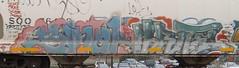 phrite sinek (TrackSideLife) Tags: life zine train graffiti track side freight phrite sinek