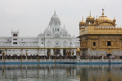 Golden Temple, Amritsar (trent_maynard) Tags: india sikh gurdwara punjab amritsar goldentemple harmandirsahib