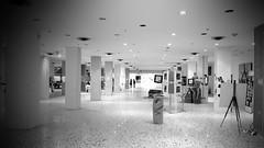 Palazzo conTemporaneo (Amici del giovedì (e della topa)) Tags: blackandwhite bw art museum exhibition udine palazzocontemporaneo