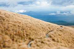 Tongariro National Park (Dmitri Naumov) Tags: newzealand nz tongarironationalpark manawatuwanganui nz2010