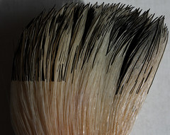 IMG_8422-001m1 (dnassler) Tags: brush bristles lightandshadow hairs