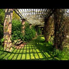 Abris De Jardin Pergola Dans Un Jardin