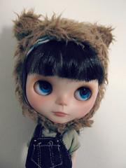 Blue-eyed cub