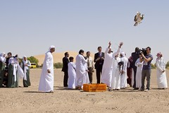 Abu Dhabi, Student Awareness Event, International Fund for Houbara Conservation (IFHC) and the Abu Dhabi Education Council (ADEC)