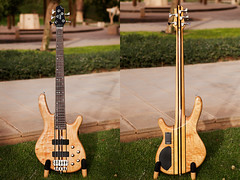Cort A5 (Chris of Arabia) Tags: bass guitar bassguitar indonesian cort 5string 5stringbass corta5