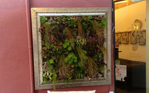 Cuadro vegetal de Marc Grañen