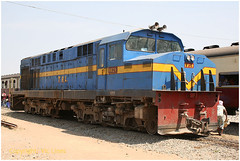 080913_05 copy (The Alco Safaris) Tags: mlw mx620