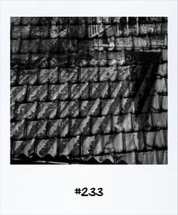 "#DailyPolaroid of 19-5-13 #233 • <a style=""font-size:0.8em;"" href=""http://www.flickr.com/photos/47939785@N05/8775973599/"" target=""_blank"">View on Flickr</a>"