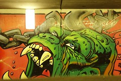 (mrgeebee) Tags: street streetart art underpass underground subway graffiti schweiz switzerland grafitti village suisse grafiti swiss sony schaffhausen spray graffitti spraypaint dsc ch rx100 sonyrx100 sonydscrx100