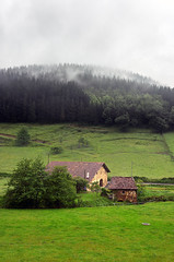Caserio en Atxondo (Mimadeo) Tags: sunlight house color building green field grass rain fog architecture farmhouse rural countryside haze spain colorful farm farming rustic foggy meadow overcast farmland pines agriculture typical hazy basque basquecountry caserio arrazola atxondo