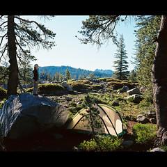 Morning Light (dmacphoto) Tags: california camping camp 120 film tallulah forest mediumformat tent sierra backpacking backpack backcountry 6x7 wilderness mamiya7 mamiya7ii tahoenationalforest blackbuttes kodakektar100