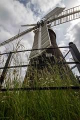 Holgate Windmill in summer