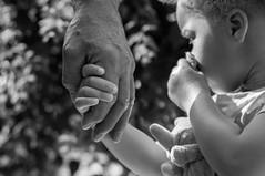 Main dans la main (yovo) Tags: famille france robert photo noiretblanc main nb corps alsace enfant doudou nous personne ambre noirblanc obernai