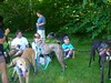 7-22-2012ArnoldArboretum009