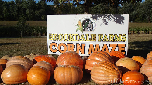 brookdale farms002