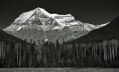 Big mountain (CNorthExplores) Tags: park travel autumn bw white mountain canada black canon rockies columbia canadian mount robson british provincial g11 explored