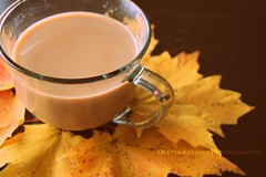 (MyLifeThroughPhotography) Tags: november autumn fall cup colors leaves photography nikon warm tea mug chai d40 2013 picmonkey