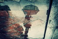 Summertime is over (~ielle~ ilarialuciani.com) Tags: autumn reflection rain umbrella rainyday upsidedown explore bologna autunno pioggia ombrello explored esplora ilarialuciani