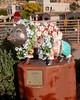 129 Javelinas On Parade - Have Aloha (saschmitz_earthlink_net) Tags: street arizona statue javelina sedona 2013