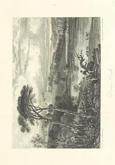 Image taken from page 31 of 'Album of Scottish Scenery: a series of views, illustrating several places of interest mentioned in Sir W. Scott's Poems and Novels. By D. Roberts, W. Westall, J. M. W. Turner ... With descriptions by J. Tillotson'