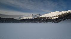 winter @ St. Moritz (Toni_V) Tags: schnee winter snow schweiz switzerland europe suisse rangefinder svizzera engadin sanmaurizio m9 stmoritz 2014 21mm oberengadin graubnden grisons maloja svizra saintmoritz grischun stmoritzersee sanmurezzan engiadinota toniv leicam9 140103 superelmarm l1014661