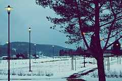 cemetery lights while winter season (Anamaria Brigitte) Tags: wood houses winter snow tree norway night dark lights village hill late