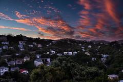 Summer Sunset (-Nicole-) Tags: sunset summer night nikon zoom fullframe nikkor fx zoomlens d600 nikond600 nikon2470mm 2470mmf28g nikkor2470mm nikkorafs2470mmf28ged nikkor2470mmf28edafs