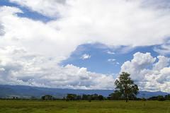 Pindamonhangaba, SP (FerradaGonzalo) Tags: brazil brasil clouds do day cloudy valle vale sp valley nubes nuvens mata paraiba pinda pindamonhangaba
