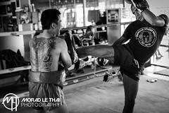DSC_3344 (MORAD LE THAI Photography) Tags: pattaya thailande sityodtong muaytha