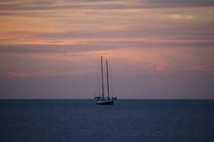 IMG_3743 (JoanZoniga) Tags: ocean sunset sea santacruz atardecer boat costarica barco colours tamarindo playatamarindo guanacaste