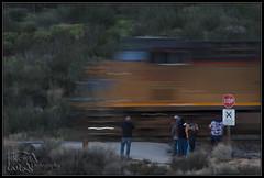 Rail Fans at the Grade-crossing (K-Szok-Photography) Tags: california canon outdoors trains socal transportation unionpacific canondslr cajon railroads mojavedesert cajonpass 50d railfans canon50d sbcusa kenszok trainsinaction kszokphotography