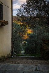 Strade (Linda Gramignan) Tags: street trees sunset sky panorama orange sun streets tree verde green scale yellow alberi stairs 35mm canon photography photo florence stair strada tramonto foto fotografie photographer view country sunday cano farmland campagna giallo cielo 7d land scala tramonti fotografia albero campagne canoneos skys strade arancione fotografo blusky cieli cieloblu serpiolle lindagramignan
